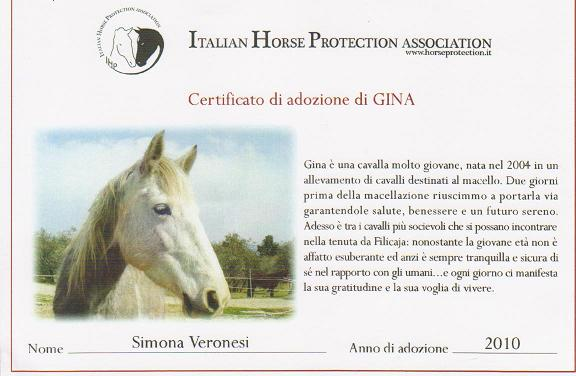 Gina_2010.JPG