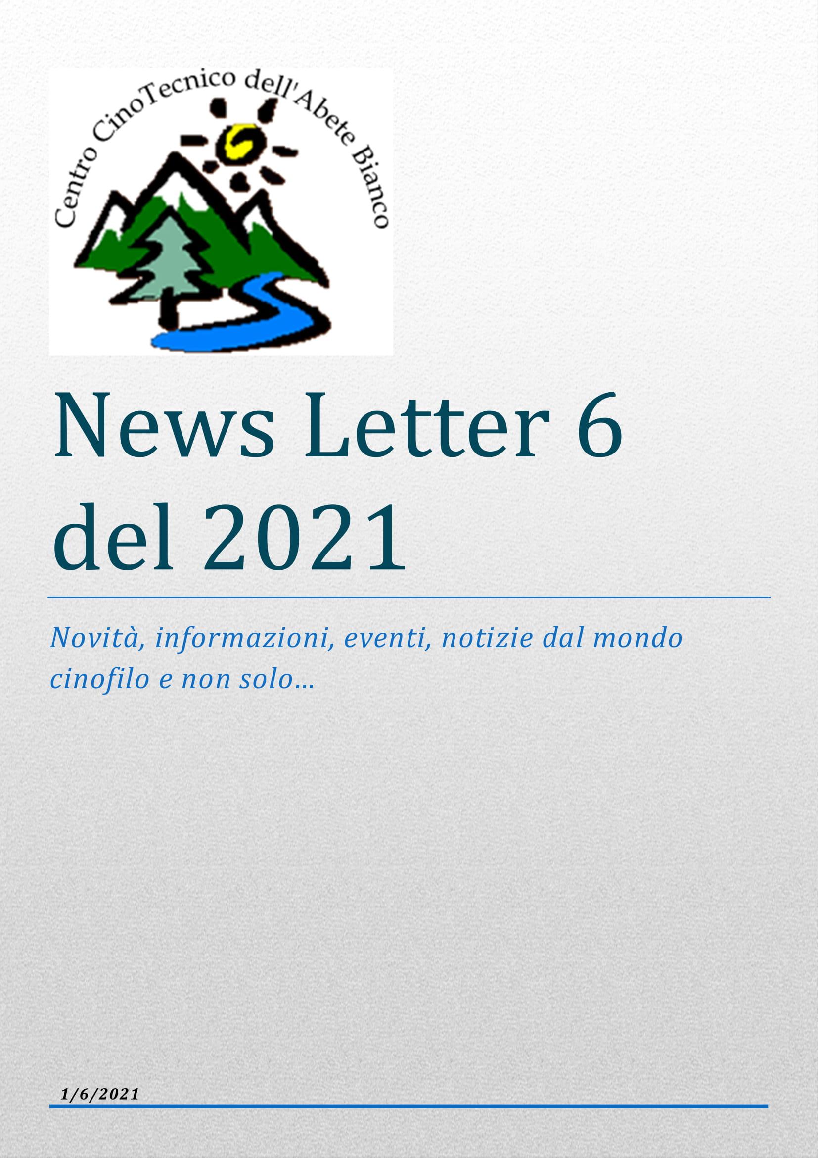 News_giugno-01.jpg